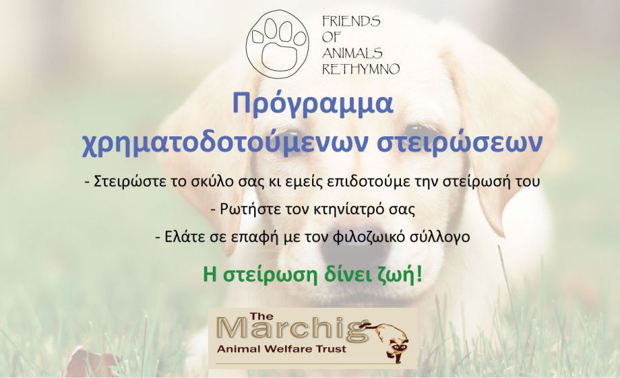 Subsidized neutering of owned dogs - Funded by the MARCHIG ANIMAL WELFARE TRUST